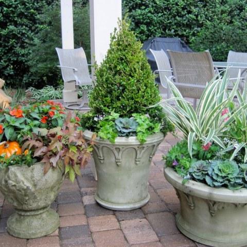 Ross Garden Design